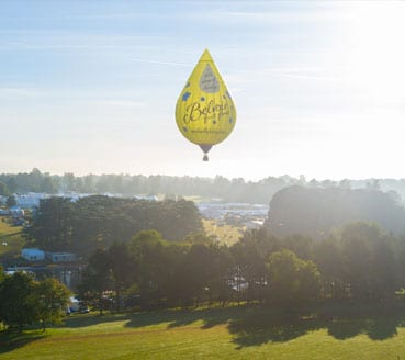 Image of Belvoir hot air balloon designed by graphic designer and branding designer Jessica Croome of Perth WA